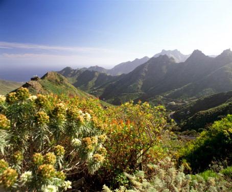 Тенерифе (Канарские острова, Испания)
